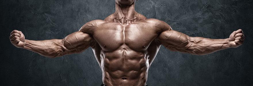 Complément alimentaire et musculation